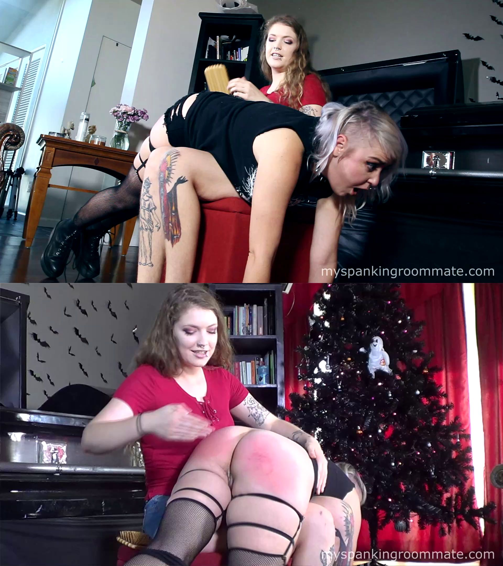 myspankingroommate – MP4/HD – Apricot Pitts, Wolfie – Apricot Spanks Roommate Over Decorations